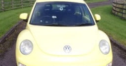 Volkswagen Beetle 2001 Petrol Lisnaskea